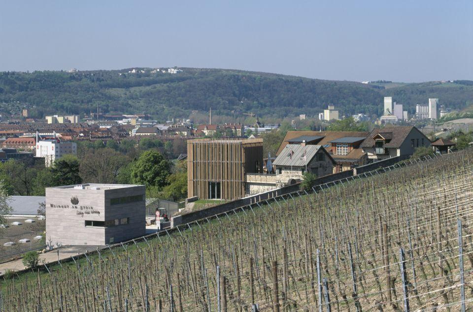 Weingut Am Stein Stettener Stein Riesling GG 2017   Fiche