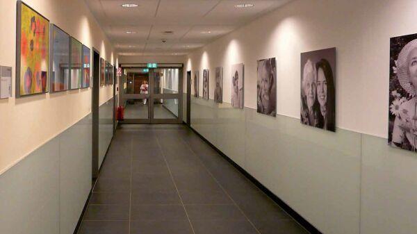 Wandschutz ais - Wandschutz kunststoff ...