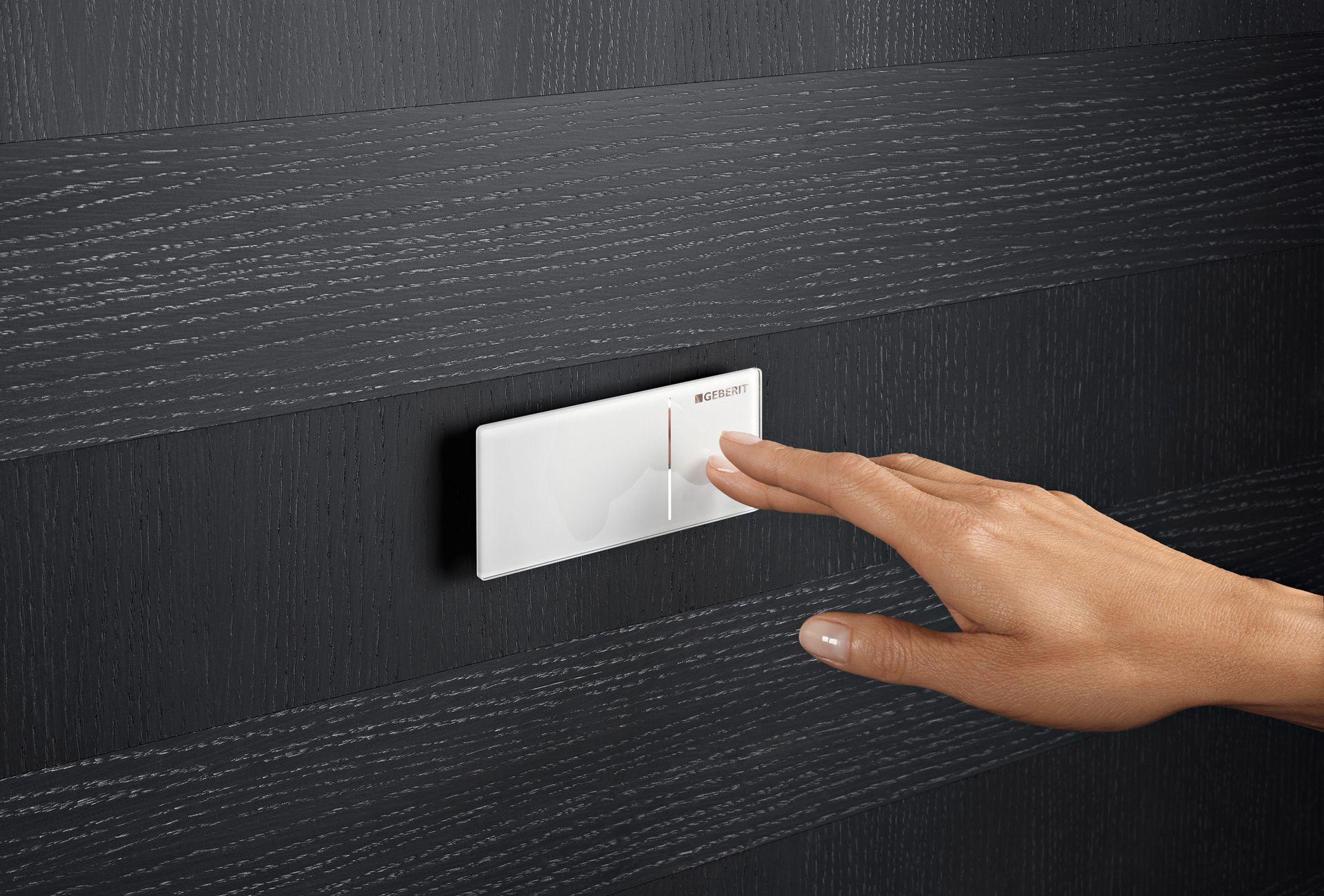 geberit bet tigungsplatten und fernbet tigungen ais. Black Bedroom Furniture Sets. Home Design Ideas