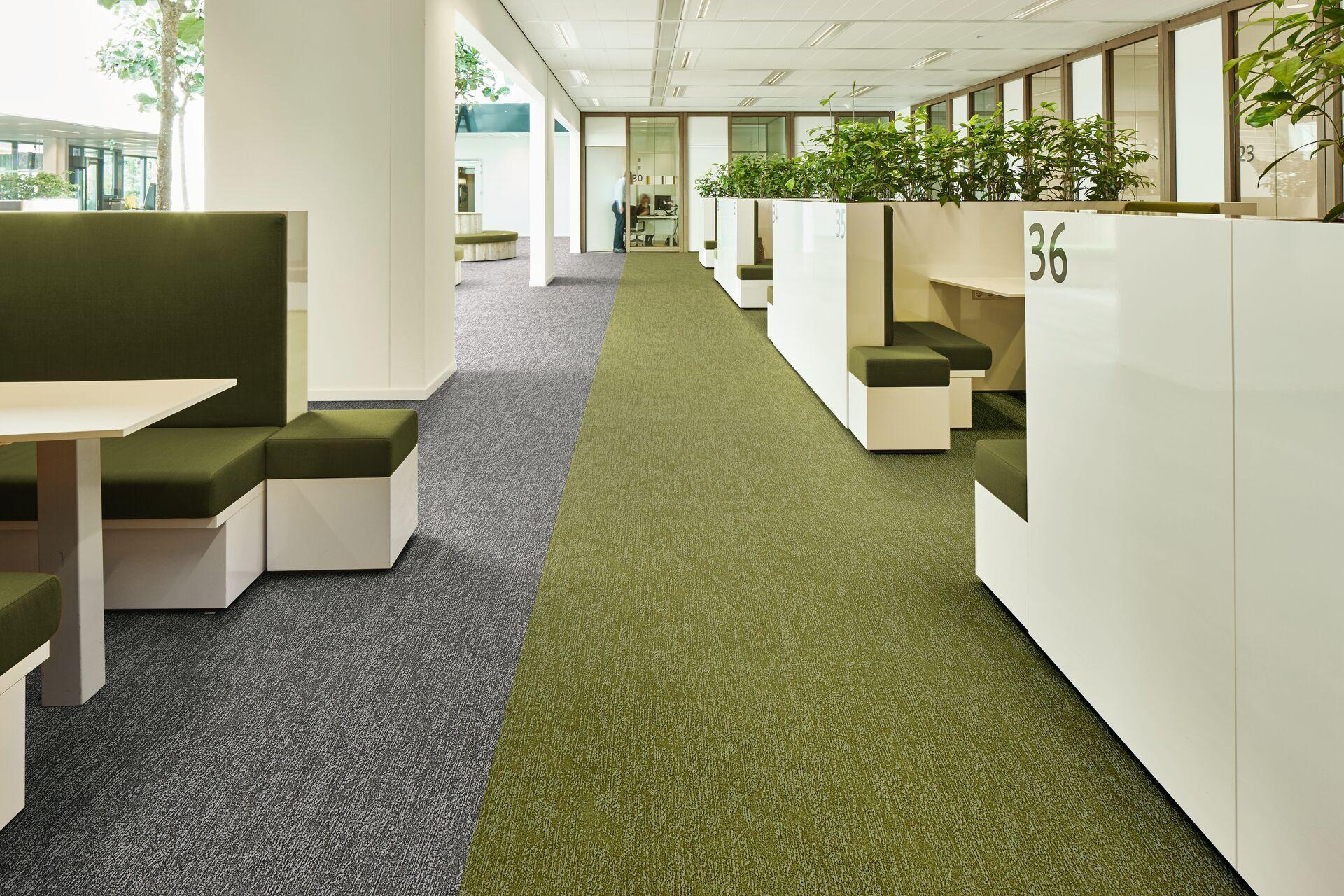 Forbo Linoleum Flooring